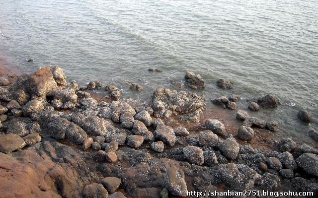 青岛海边观景