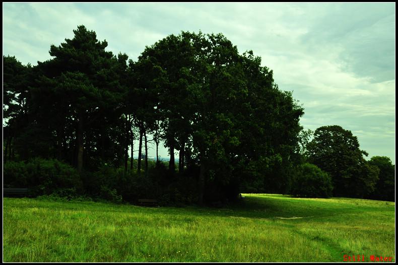 伦敦汉普斯特德高地公园