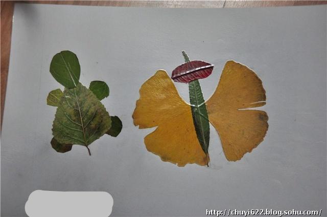 用树叶的形状删除许多小动物