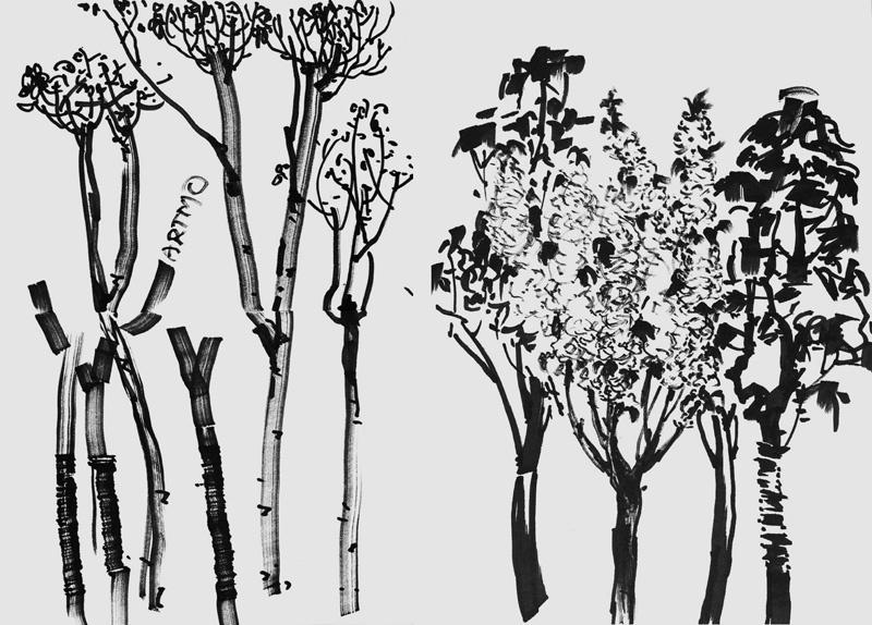 速写风景树的画法