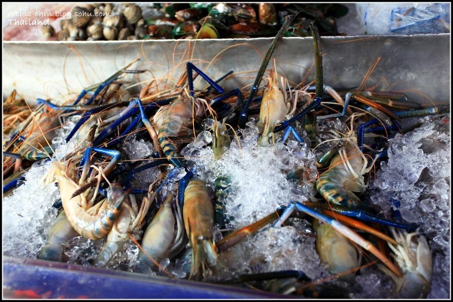 金沙岛的海鲜很新鲜哦