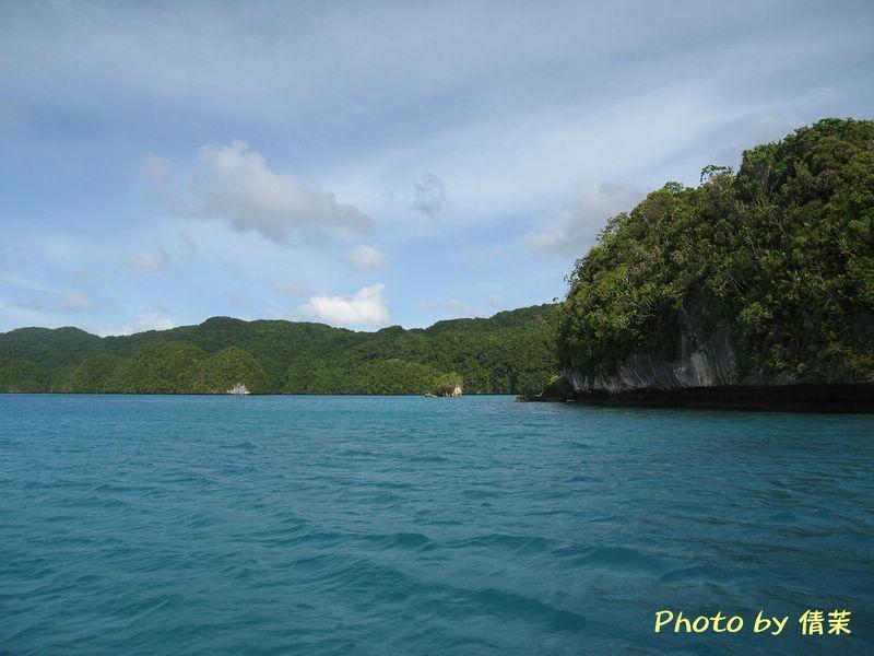 """一个个岛屿,像巨大的蘑菇一样,把海面分割成许多条水道,更像海上""""芦苇"""