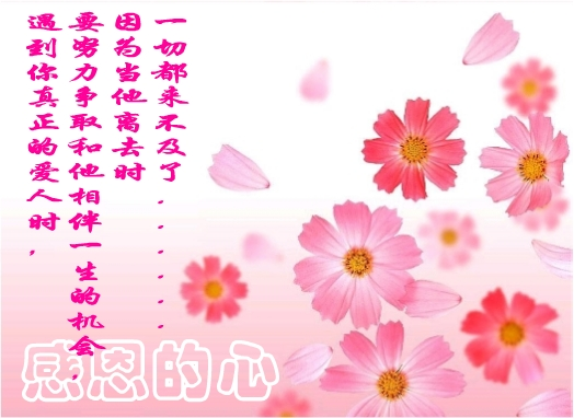 今天也是吉日_今天是感恩节
