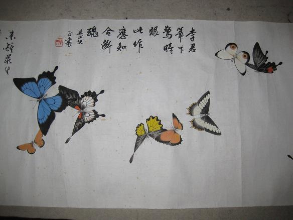 百蝶图——生宣画工笔蝴蝶