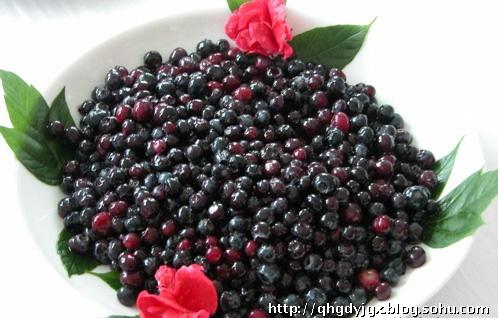 蓝莓的手工制作方法