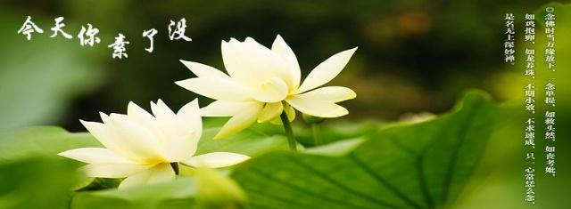 佛教生活_黄梅五祖寺中国佛教网_生活禅