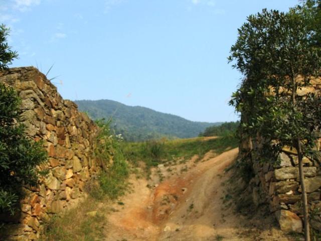 山里的风景
