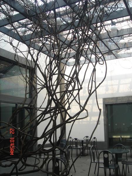 玻璃开放式的钢结构