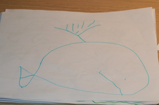画鲸鲨的简笔画