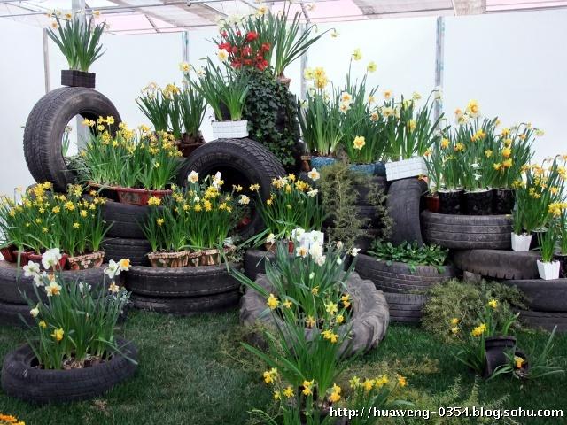 废物利用手工制作花园
