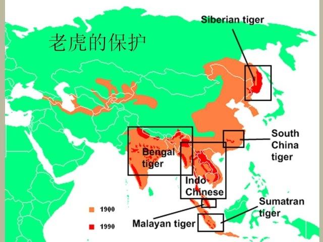 彩色版块覆盖的地方是我国脊椎动物多样性最为重要的区域.
